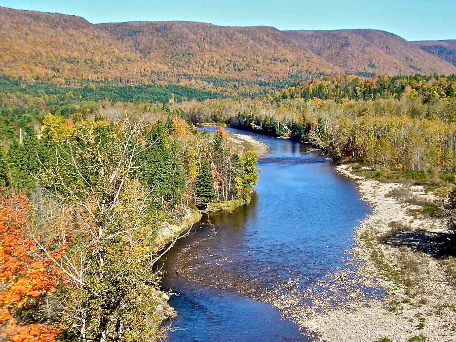 northeast margaree river from the look
